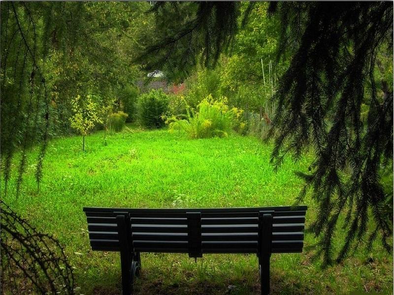 Choose a quiet place