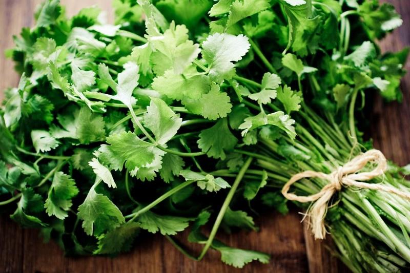 Eye wash based on cilantro to treat itchy eyes