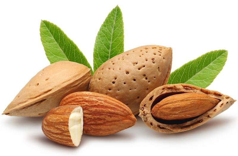 Almonds to treat jaundice