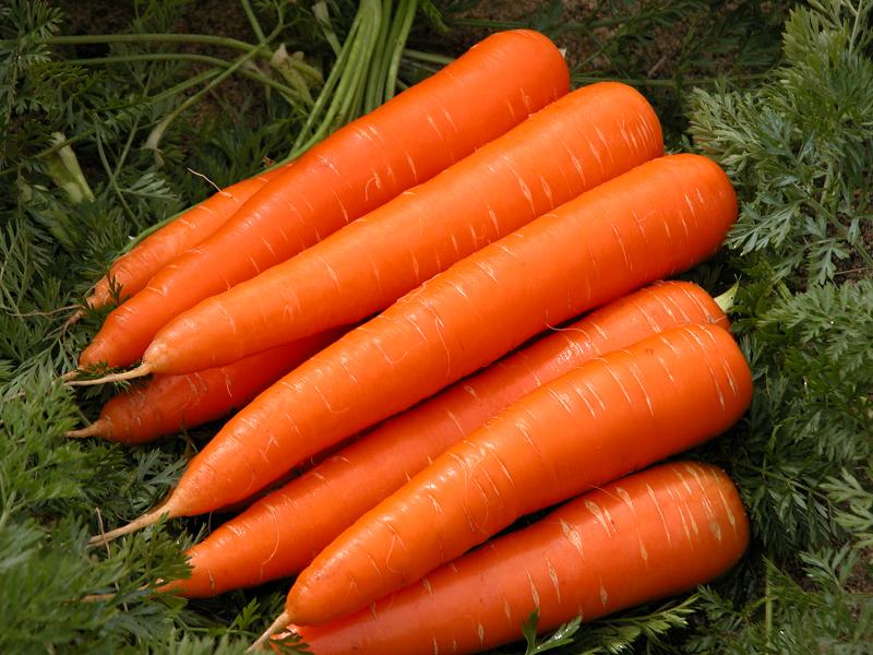 Carrots to treat jaundice