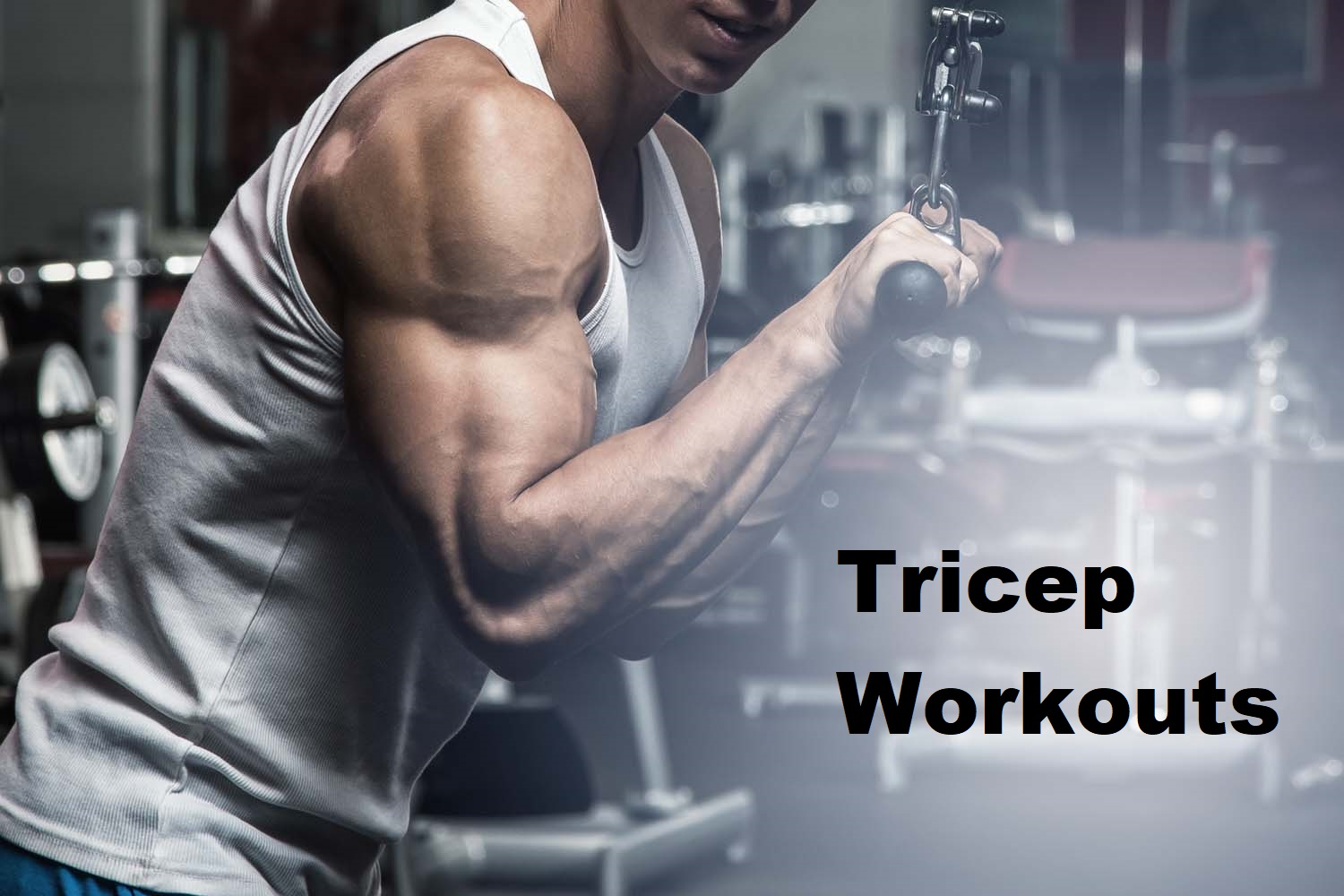 Tricep Workouts